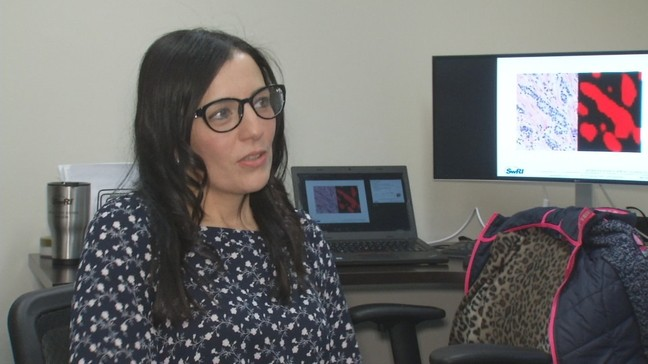 Finding breast cancer with artificial intelligence produces
